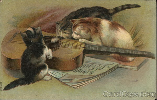 Kittens Playing with Guitar Cats Music