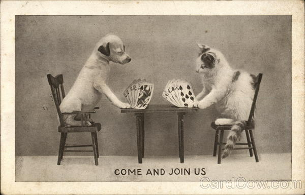 Come and Join Us - Dog and Cat Playing Cards Multiple Animals