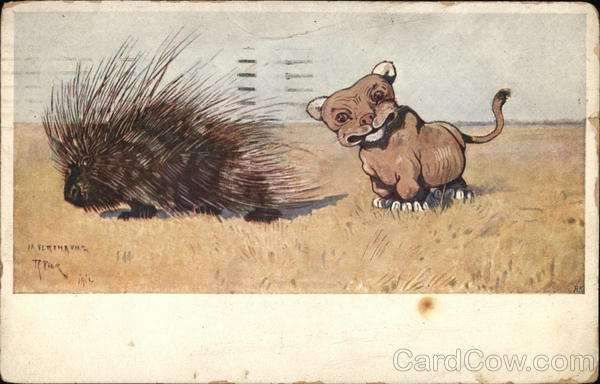 Porcupine & Baby Lion Multiple Animals