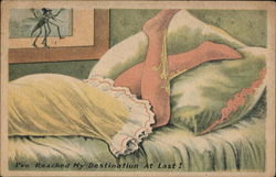 Mosquito Eyeing Woman's Leg Postcard