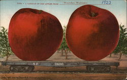 A Carload of Red Apples from Wenetchee, Washington