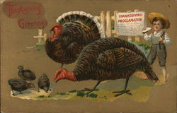 Thanksgiving Greetings - Child with Turkeys
