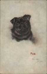 Painting of a black pug