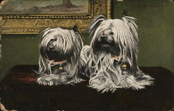 A PAIR OF WHITE DOGS POSED IN FRONT OF A PAINTING.