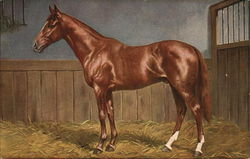 Painting of brown horse standing on hay in a stall