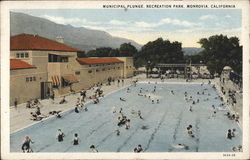 Municipal Plunge, Recreation Park Postcard