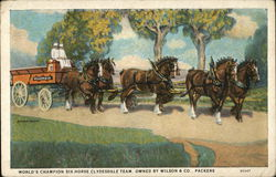 World's Champion Six-Horse Clydesdale Team, Owned by Wilson & Co., Packers
