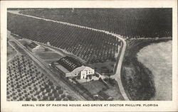 Aerial View of Packing House and Grove