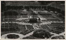 Greene Herb Gardens