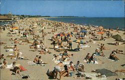 General Beach Scene at Cape Cod