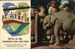 Children's Zoo and Farm Postcard