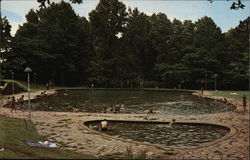 Franklin D. Roosevelt Park - Swimming Pool