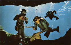 Divers demonstrate underwater scuba equipment in the crystal clear water of Florida Postcard