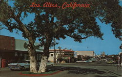 Los Altos, California