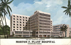 Morton F. Plant Hospital - Witt Memorial Building