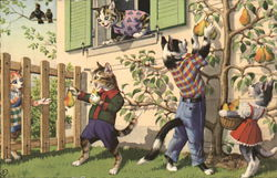 Dressed Cats Picking Pears