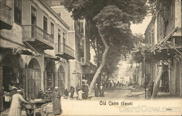 View of Old City Cairo Egypt Africa