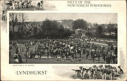 Meet of the New Forest Foxhounds Postcard