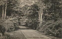 Haigh Plantation