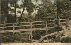 The Bridge, Borsden Wood
