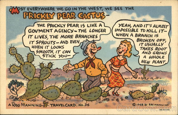 Most Everywhere We Go In the West Reg Manning Comic, Funny