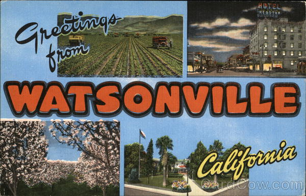 Greetings From Watsonville, California Large Letter