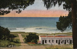 Where the Pines Meet the Ocean, Cambria Pines by the Sea