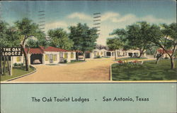 The Oak Tourist Lodges