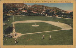 The Training Field of the Chicago Cubs
