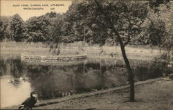 Capron Park - Duck Pond