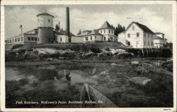 Fish Hatchery, McKown's Point