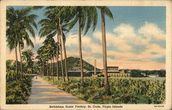 Bethlehem Sugar Factory