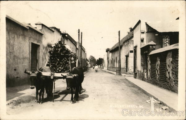 Ox pulling a cart of wood on a street in Mexico 1925