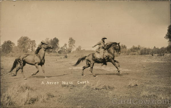 A Never Miss Catch Cowboy Western