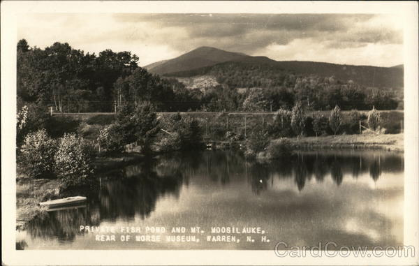 Private Fish Pond and Mt. Moosilauke - Rear of Morse Museum Warren New Hampshire