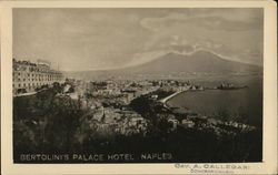Aerial View of Bertolini's Palace Hotel