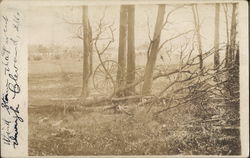 Damage from 1908 Wind Storm