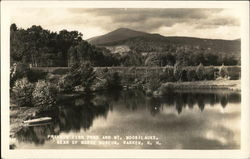 Private Fish Pond and Mt. Moosilauke - Rear of Morse Museum