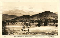 Mt. Washington from Intervale Postcard