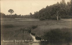 Frenchmans Brook and Meadow