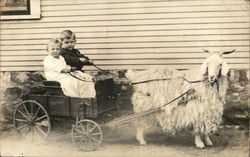 Two Young Children in Cart Pulled by Wooly Goat Postcard