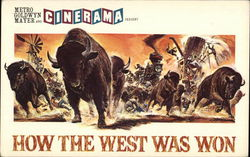 How the West Was Won: The Buffalo Stampede