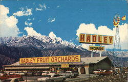 Hadley Fruit Orchards, Inc.