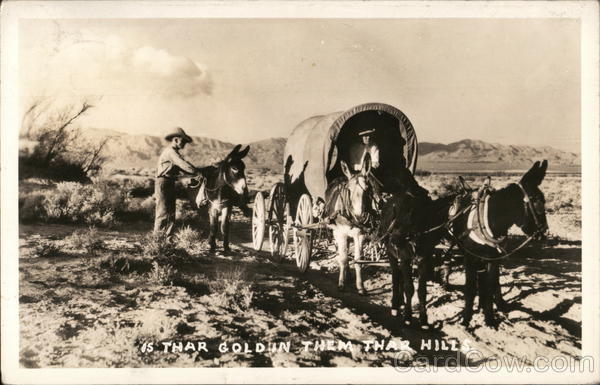 Is Thar Gold in them Thar Hills Covered Wagon led by Mules