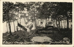 Clark's Camp Laurel