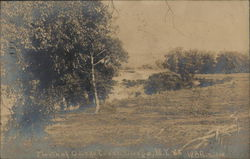 Mouth of Oswego Creek Postcard