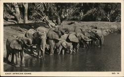 East African Game - Elephants at Water Hole