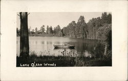 Lake O' the woods