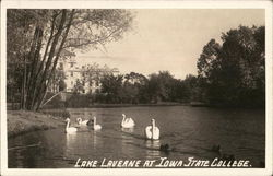 Iowa State College - Lake Laverne