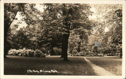 City Park, St. Louis, Mich Postcard